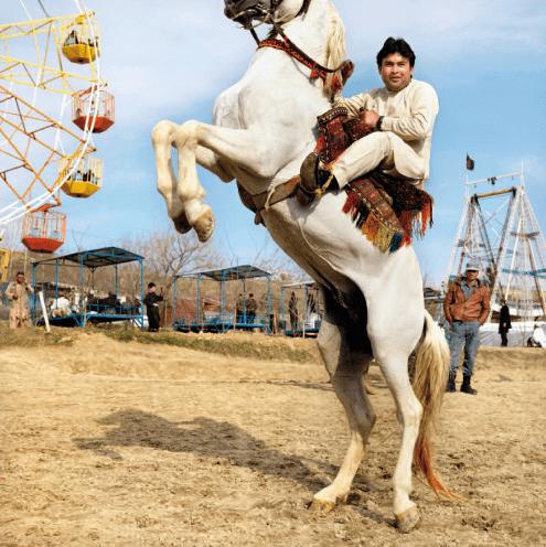 Marieke van der Velden, Paard (Kabul, Afghanistan), 2013