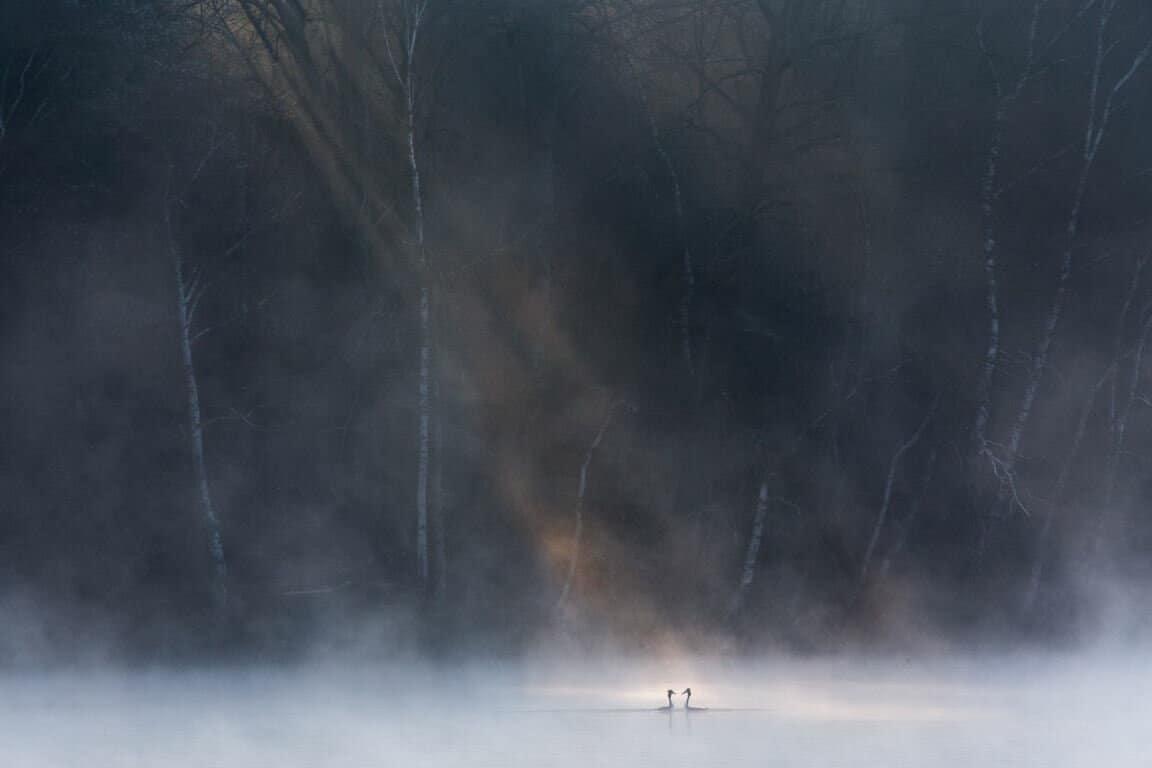 Foto David Peskens