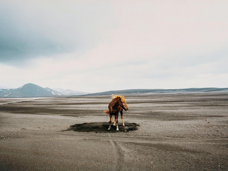 Foto uit Black Lava Fairytale - Susanne Walström