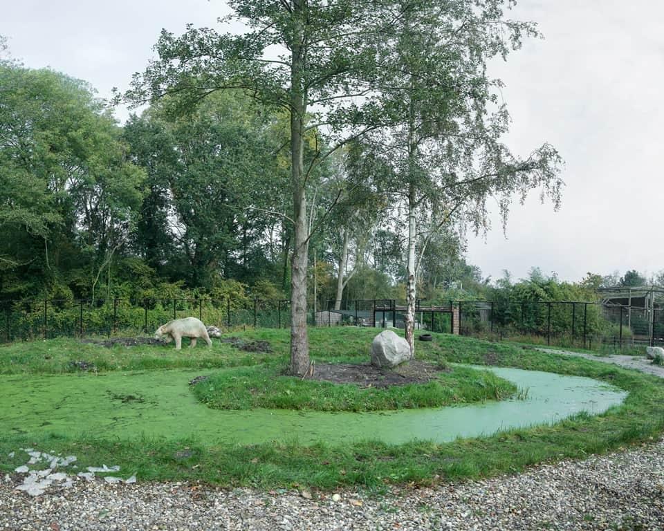 Aquazoo Friesland - Foto Sheng Wen Lo
